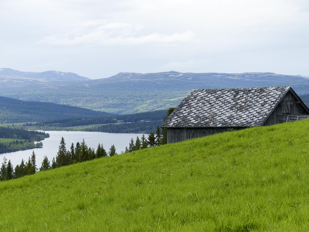 04 fjords