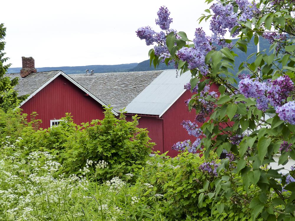 06 maisons typiques aux murs rouges