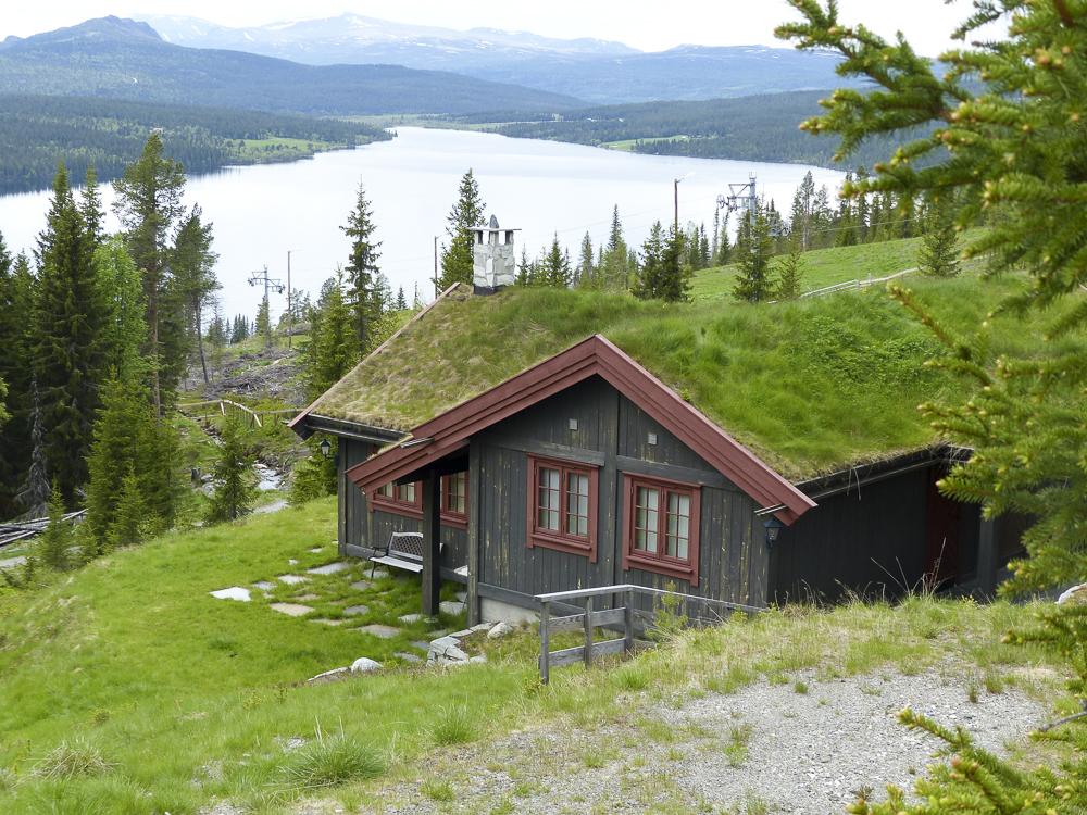 07 autres maisons typiques aux toits végétalisés