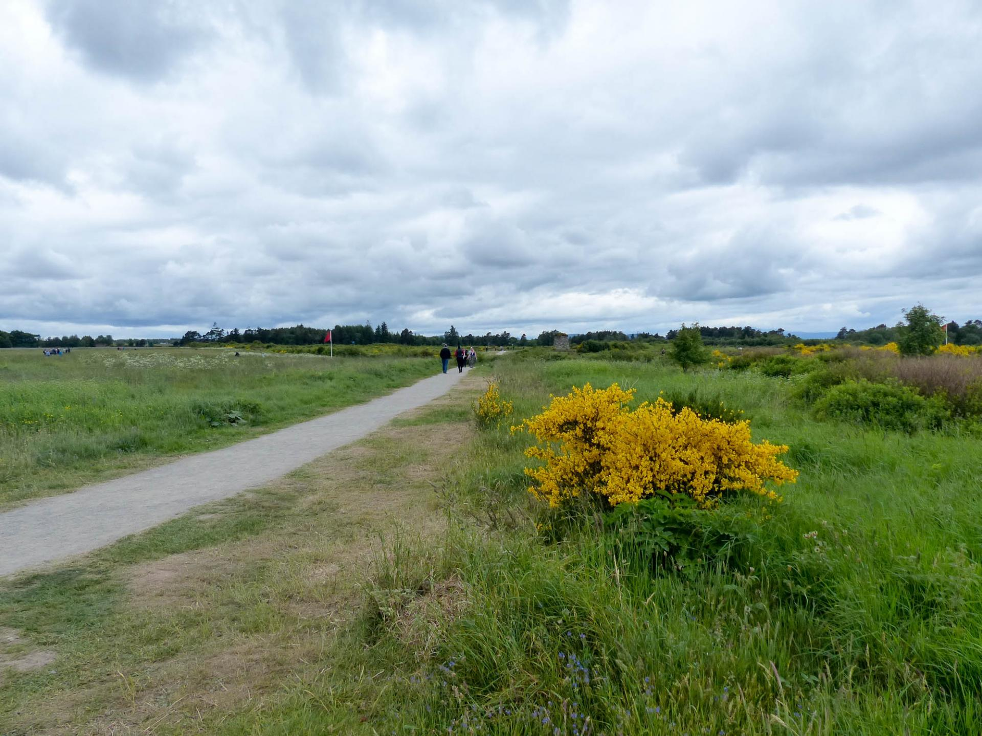 16 Champ de bataille de Culloden