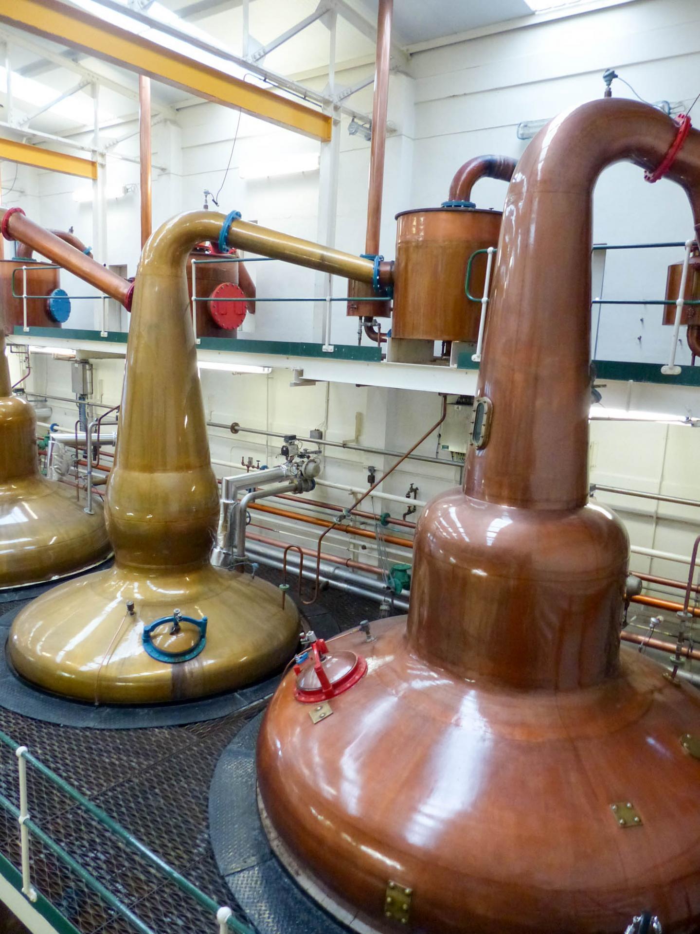 19 La distillerie Grant