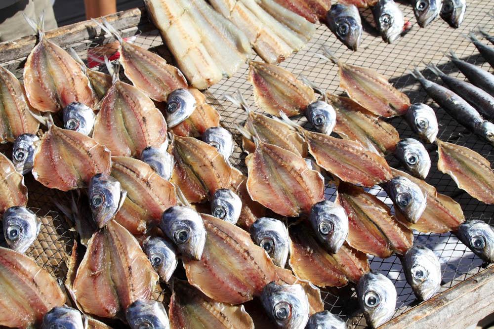 36 NAZARE poisson séché