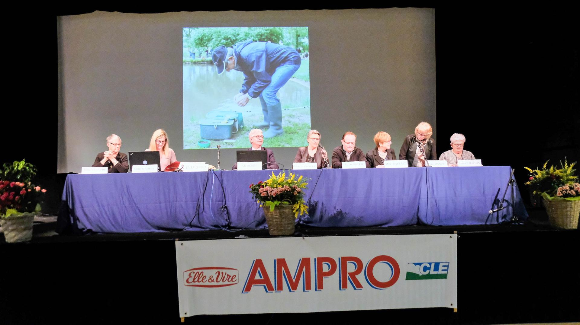 AG ampro - (161)