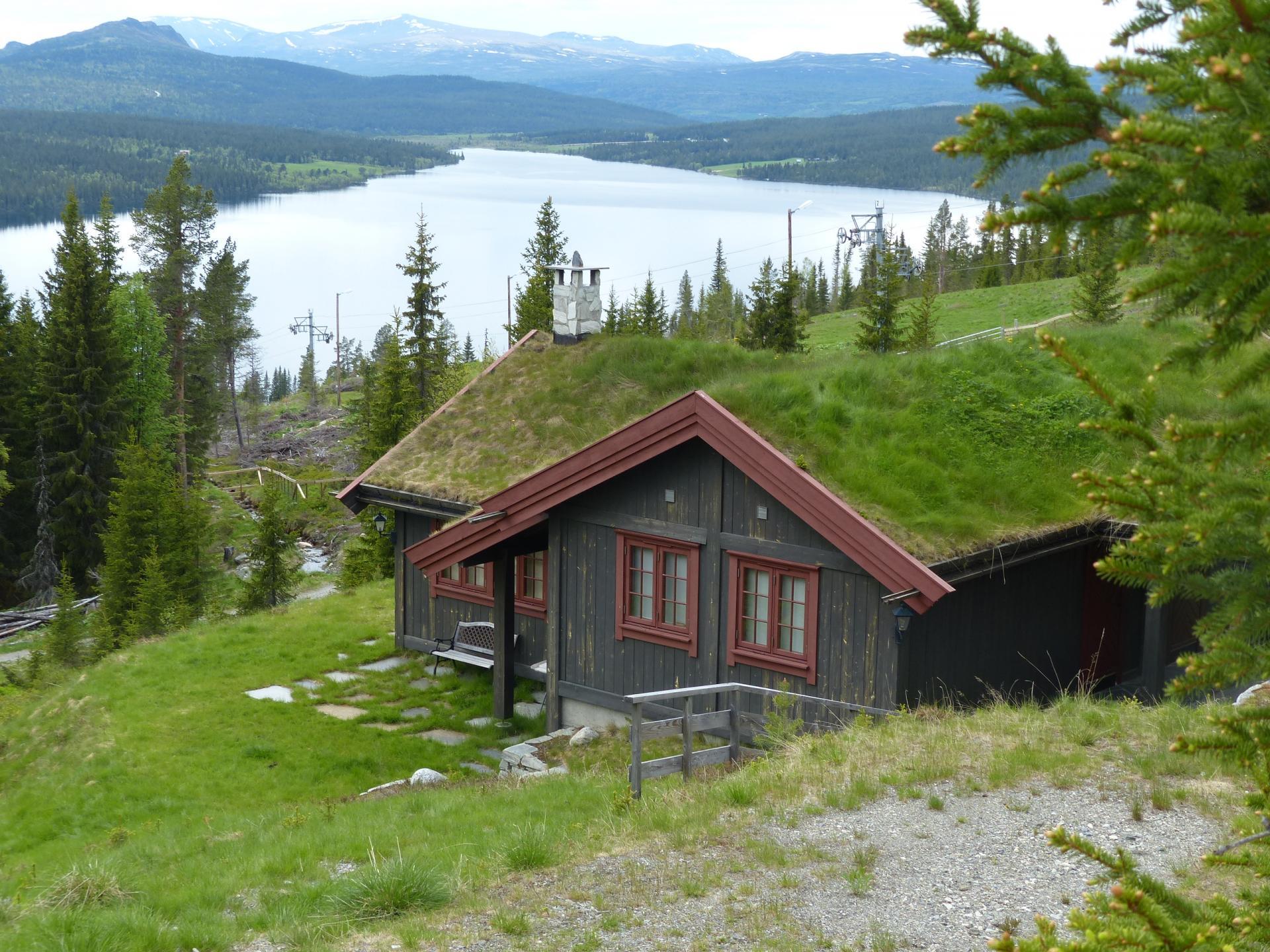 07 autres maisons typiques aux toits vegetalises